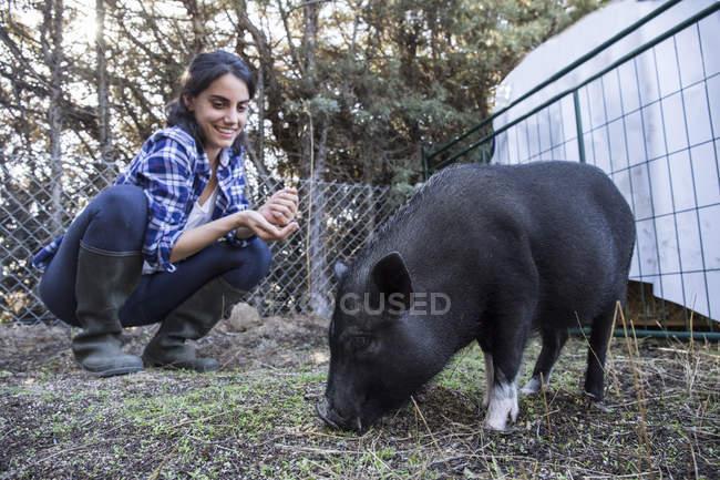 Жінка сидить Чорна свиня на фермі — стокове фото