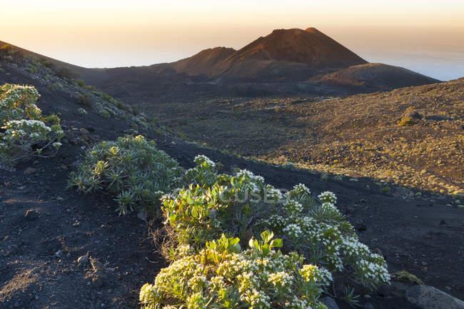 Іспанія, Канарські острови, Ла-Пальма, лави краєвид на Кумбре Нуева — стокове фото