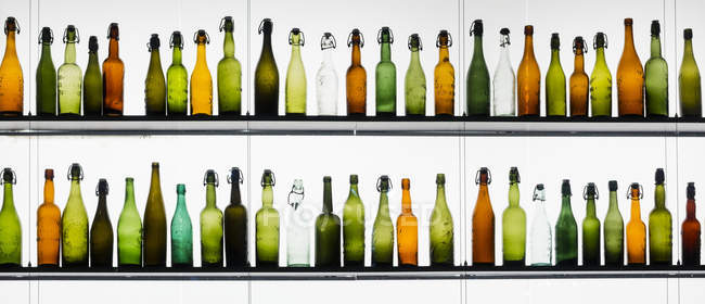 Two rows of different beer bottles — Stock Photo