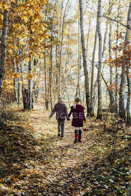 Hansel and Gretel, Boy and girl walking alone in the forest, witch waiting behind tree — Stock Photo