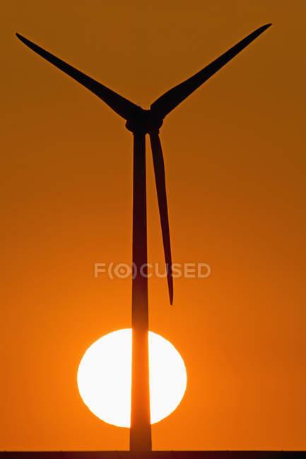 Windrad und Abendsonne — Stockfoto