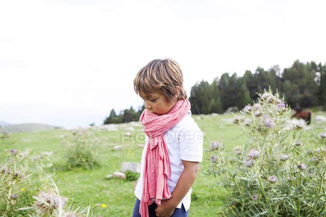 Kaukasischer kleiner Junge mit rosa Schal auf der Wiese — Stockfoto