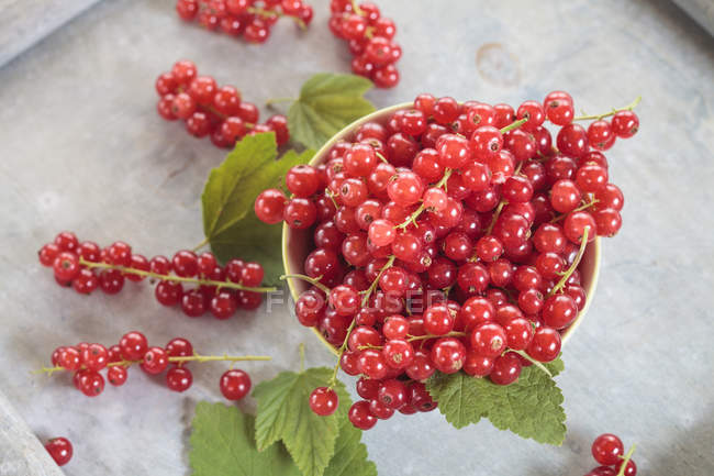 Крупным планом вид красной смородины с листьями в миске — стоковое фото