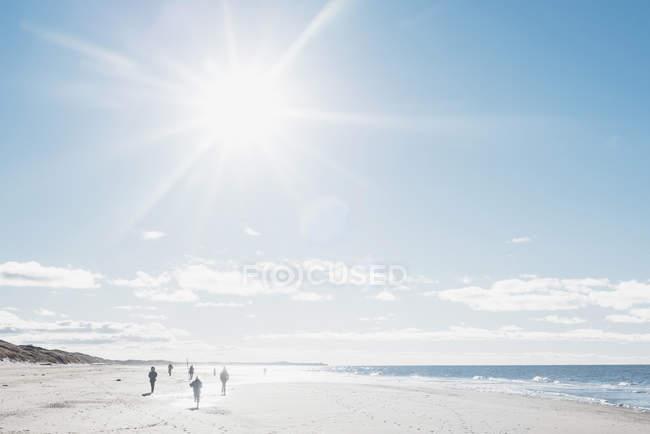 Danimarca, Hirtshals, persone che camminano sulla spiaggia in controluce — Foto stock