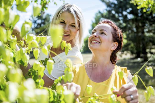 Два посміхаючись зрілі жінки стоять біля дерева — стокове фото
