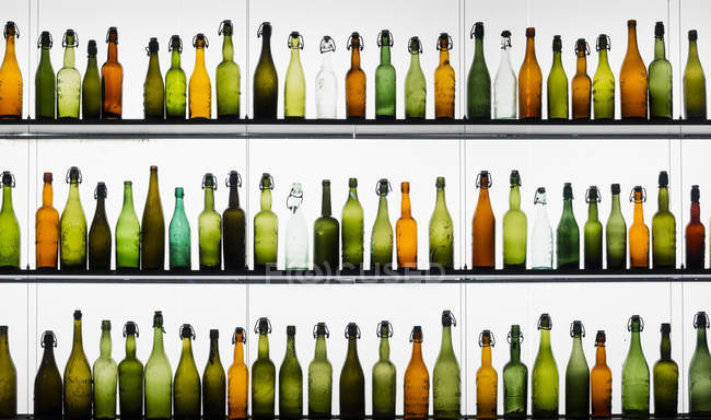 Three rows of different beer bottles — Stock Photo