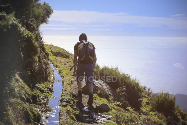 Portugal, Madeira, man on hiking trip along the Levadas — Stock Photo
