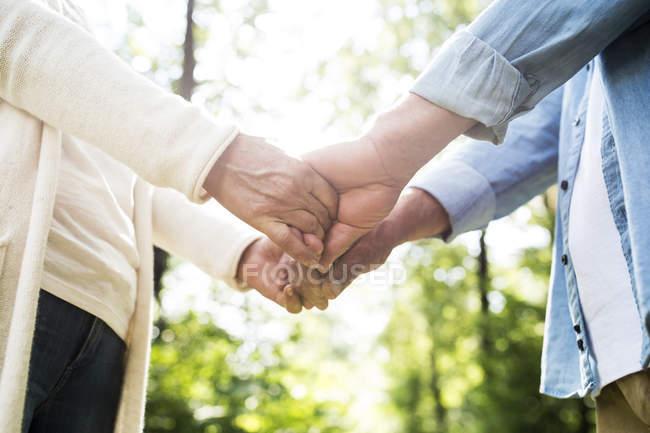 Mani della holding delle coppie senior nella natura, vista parziale — Foto stock