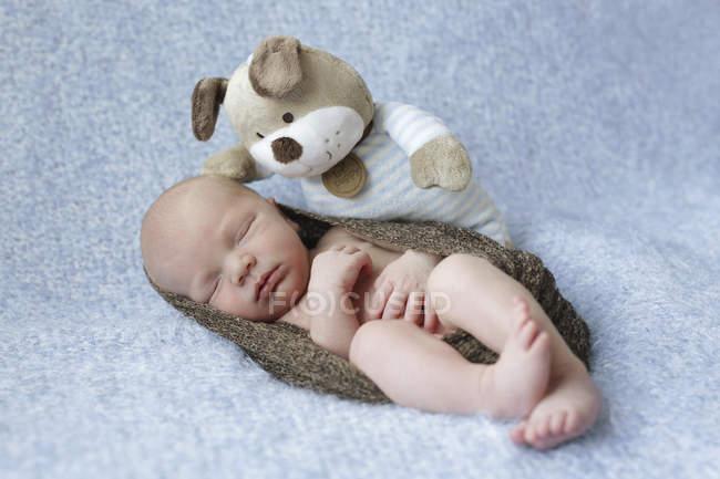 Dormir dormir recém-nascido embrulhado no cobertor com pelúcia brinquedo — Fotografia de Stock