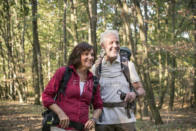 Старшая пара прогулки в лесу — стоковое фото