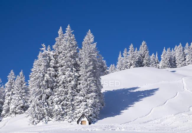 Alemanha, Alta Baviera, Lenggries, capela na área de esqui em Brauneck — Fotografia de Stock