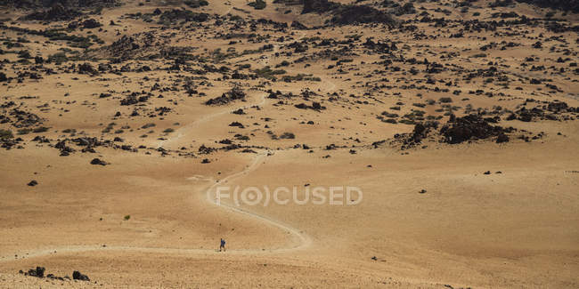 Spain, Teneriffe, Parque Nacional de las Canadas del Teide, hiker — Stock Photo