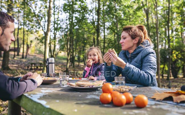 Сім'я з пікнік у лісі — стокове фото