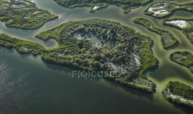 USA, Florida, Foto aerea di mangrovie e banchi di sabbia lungo la costa occidentale della baia di Tampa — Foto stock