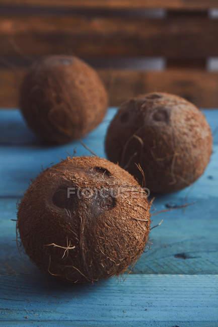 Cocos enteros frescos sobre madera azul - foto de stock