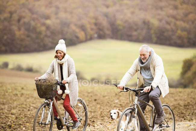 Senior couple doing a bicycle trip with dog — Stock Photo
