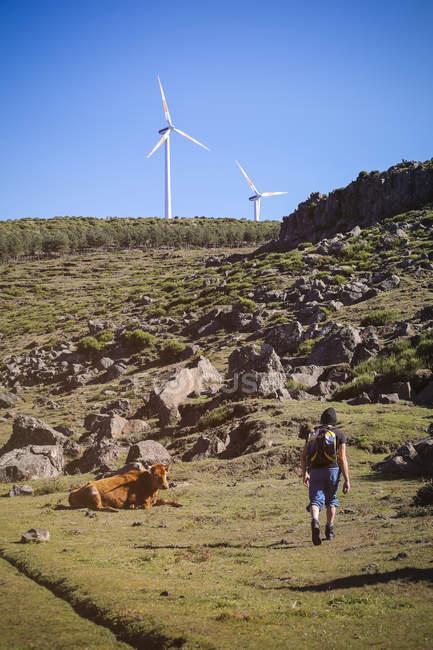 Portugal, Madeira, homem em viagem de caminhada ao longo das Levadas — Fotografia de Stock