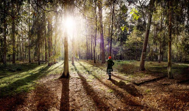 Вид сзади женщины в красной шапке, стоящей на лесной поляне — стоковое фото