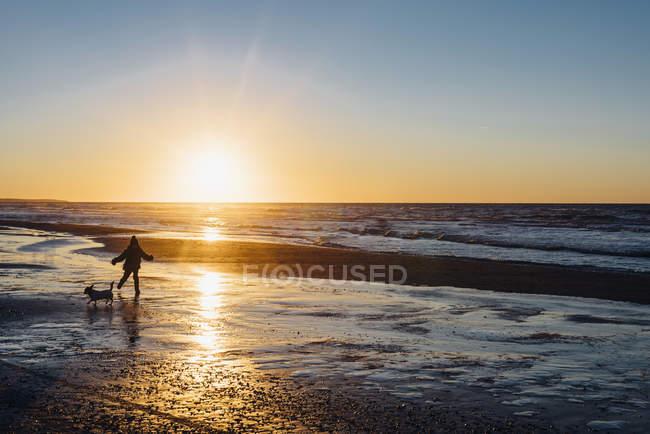 Garçon marche avec chien sur la plage au coucher du soleil — Photo de stock