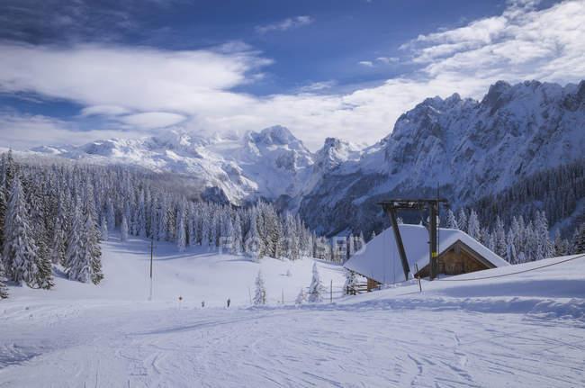Autriche, Dachstein, piste de ski et arbres pendant la journée — Photo de stock