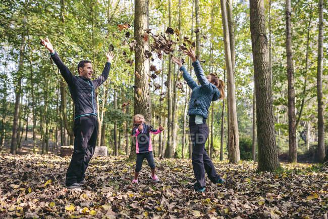 Familia feliz lanzando hojas de otoño en el aire - foto de stock