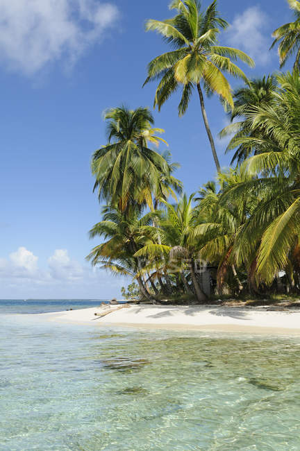 Panama, San Blas Islands, desert island, beach with palms — Stock Photo