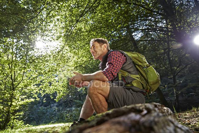 Caminante sentado en el tronco del árbol con smartphone en el bosque - foto de stock