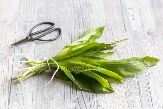Bouquet de RO et de ciseaux sur la table en bois — Photo de stock