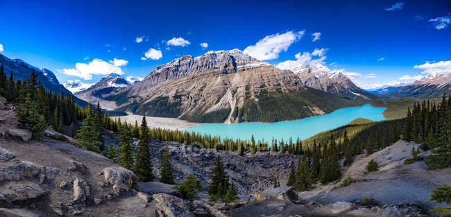 Canada, Alberta, Glacial, Rockies, Icefield Parkway, Peyto Lake, Banff National Park — Stock Photo