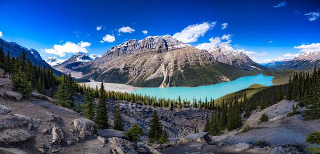 Canada, Alberta, glaciaire, montagnes Rocheuses, promenade des glaciers, Peyto Lake, Parc National Banff — Photo de stock
