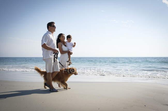 Сім'я ходьба на піщаному пляжі з собакою — стокове фото