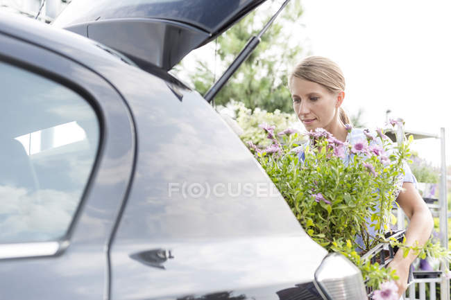 Женщина, Загрузка цветущих растений в автомобиле — стоковое фото
