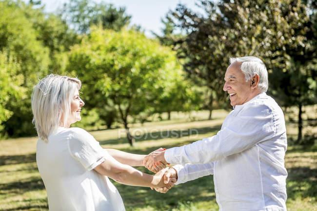 Счастливая пожилая пара, держащаяся за руки на лугу — стоковое фото