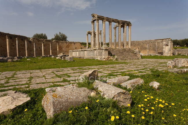Tunisie, gouvernorat de Beja, ruine romaine de Dougga pendant la journée — Photo de stock