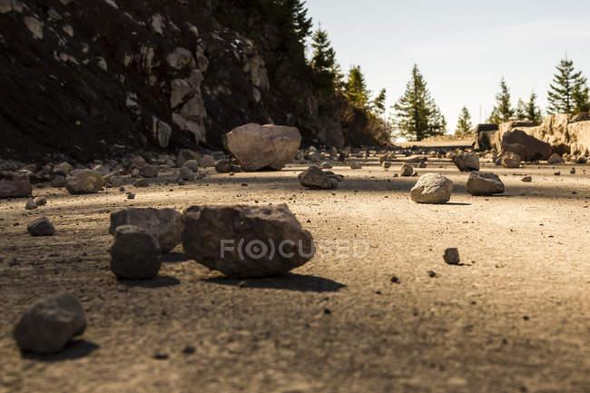 EUA, Washington, Seattle, Parque Nacional do Monte Rainier, pedras na estrada da montanha — Fotografia de Stock