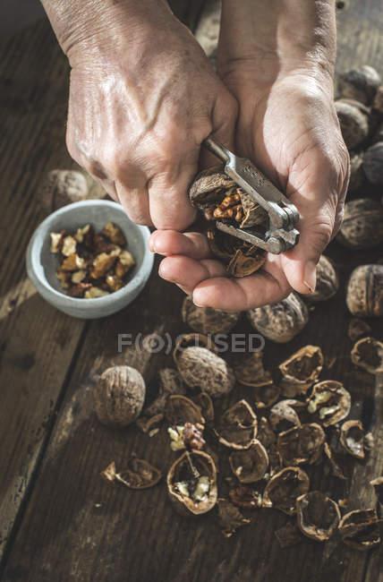 Female hands cracking walnuts — Stock Photo