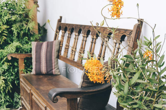 Cozy Wooden Bench With Plants Stock Photo