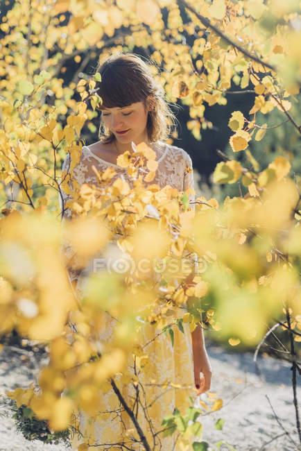 Young woman among atumnal yellow leaves — Stock Photo