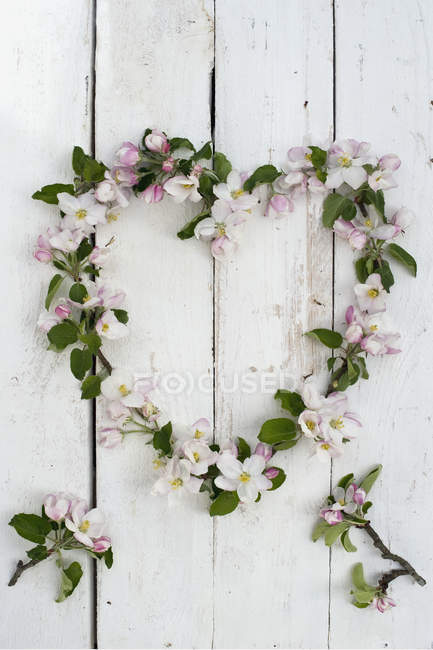Corona en forma de corazón de flores de manzana en madera blanca - foto de stock
