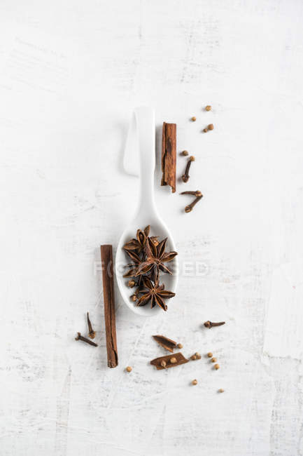 Christmas flavor, cinnamon, clove, coriander and star anise on wooden surface — Stock Photo