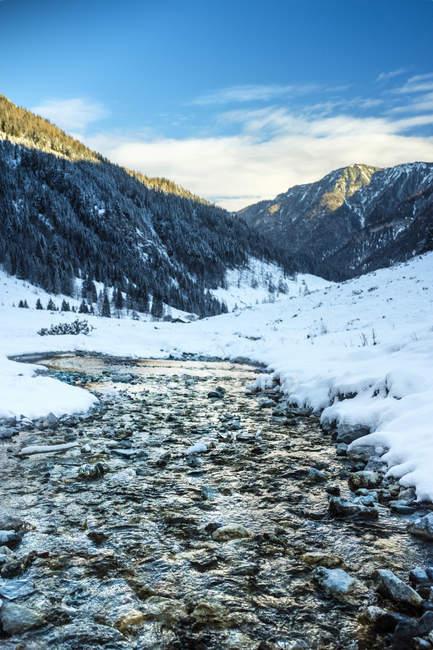 Ruscello di montagna a Liebeseck, Kleinarl, Stato di Salisburgo, Austria — Foto stock