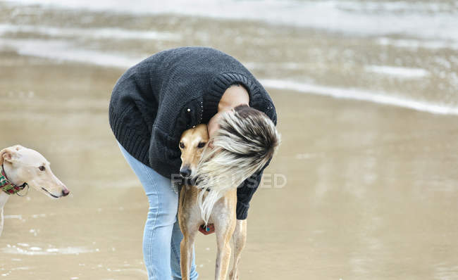 Young woman kissing her greyhound on the beach — Stock Photo