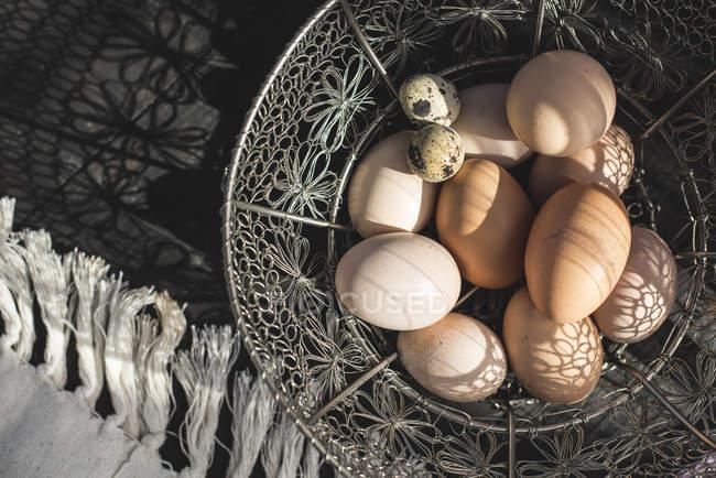 Корзина из перепелиных яиц с коричневыми куриными яйцами — стоковое фото