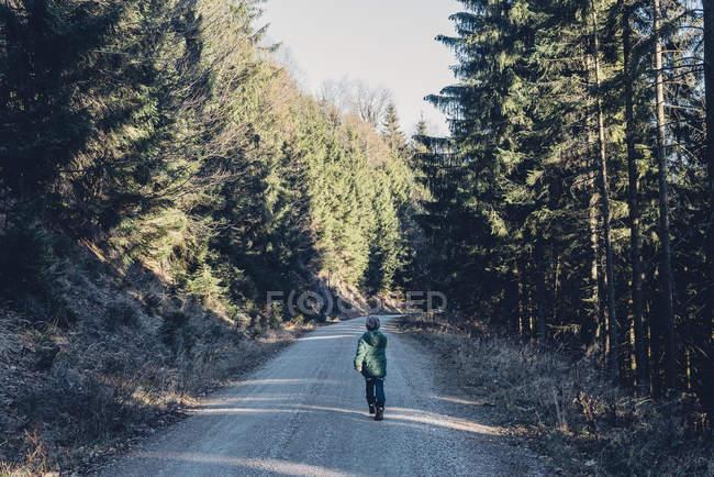 Germania, Berchtesgadener Land, ragazzo che cammina nel bosco — Foto stock