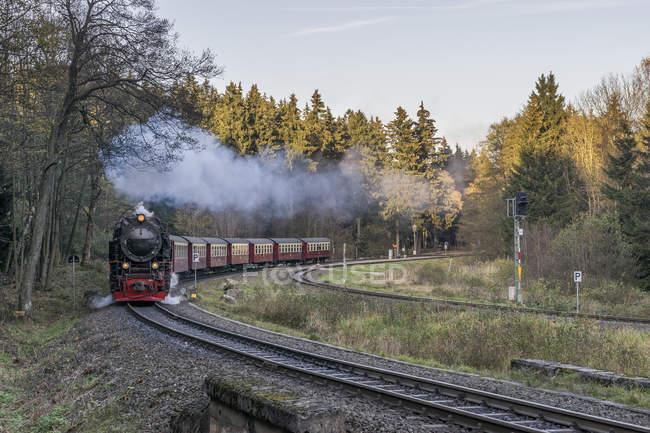 Germania, Sassonia-Anhalt, Parco nazionale di Harz, ferrovia a scartamento ridotto Harz in autunno — Foto stock