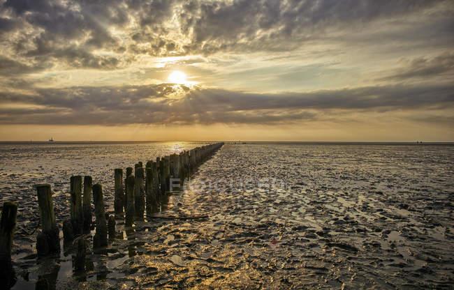 Allemagne, Dithmarschen, Friedrichskoog-Spitze, coucher de soleil à la laisse de mer du Nord — Photo de stock