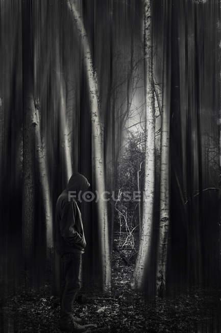 Человек в капюшоне стоит в темном лесу — стоковое фото