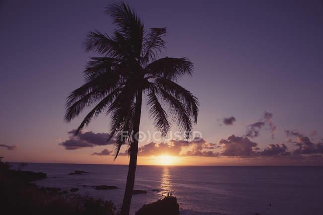 États-Unis, Hawaï, Oahu, baie de Waimea dans la soirée — Photo de stock