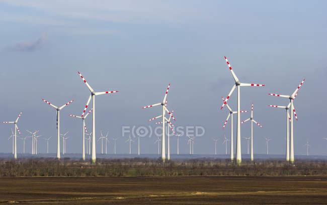 Áustria, Burgenland, Andau, parque eólico vista para o campo — Fotografia de Stock