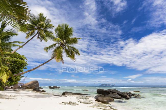 Сейшельские острова, остров Силуэт, пляж Ла Passe, Presidentel пляж, пальмы с гамаком — стоковое фото